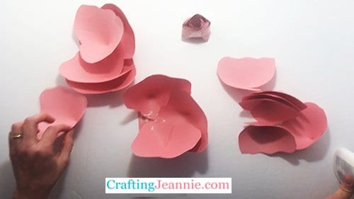 three petals glued to the rose base