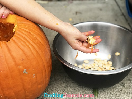 pulling out the pumpkin seeds